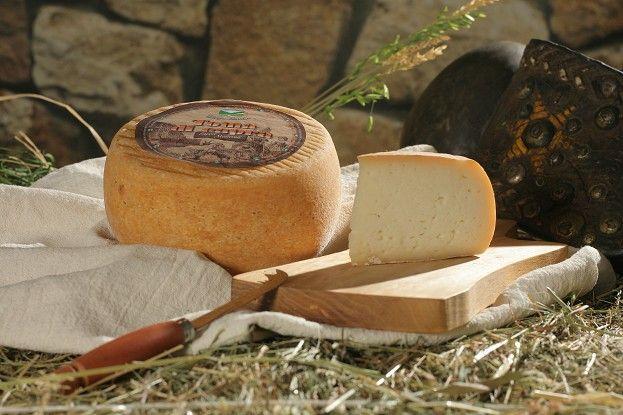 Toma di capra (aged goat cheese)