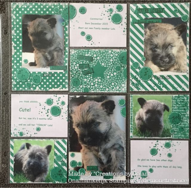 Creations by Jolan New Stampin'Up Catalogue 2016-2017 sneak peak Project Life Emerald Envy