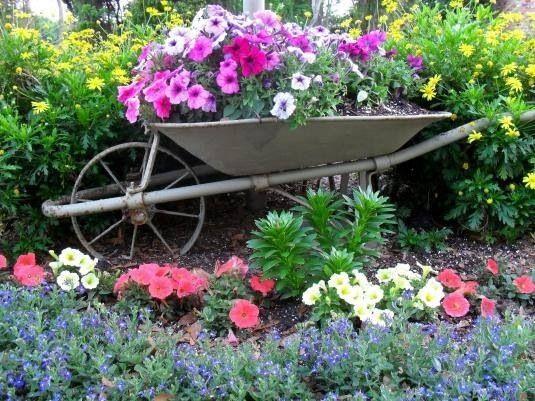 Carrera para jardín