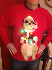 Christmas Jumpers Jumpers And Fancy Dress On Pinterest