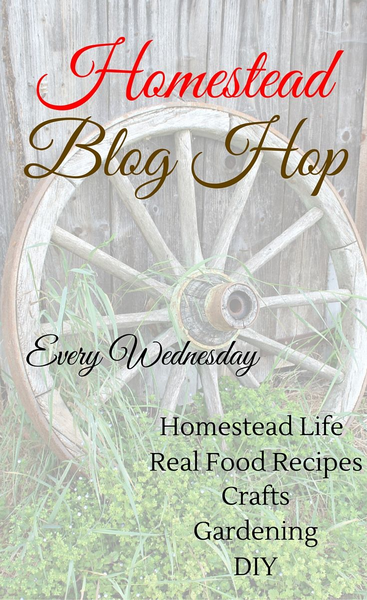 Homestead Blog Hop will take place every Wednesday featuring real food recipes, natural health remedies, DIY, crafts, Gardening Tips, and more...