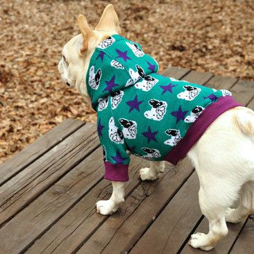 14 insanely cute Dog Hoodies every Frenchie needs to own this winter.