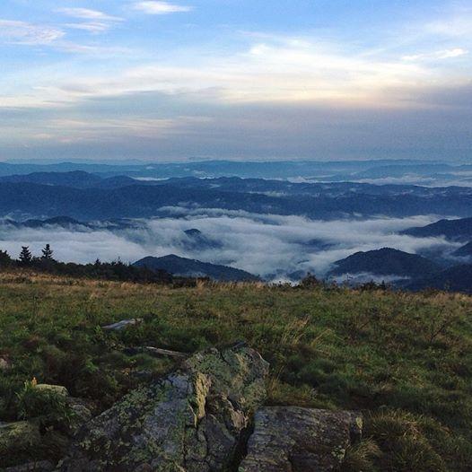 Roan Mountain State Park: 11 Best Where We Trek Images On Pinterest