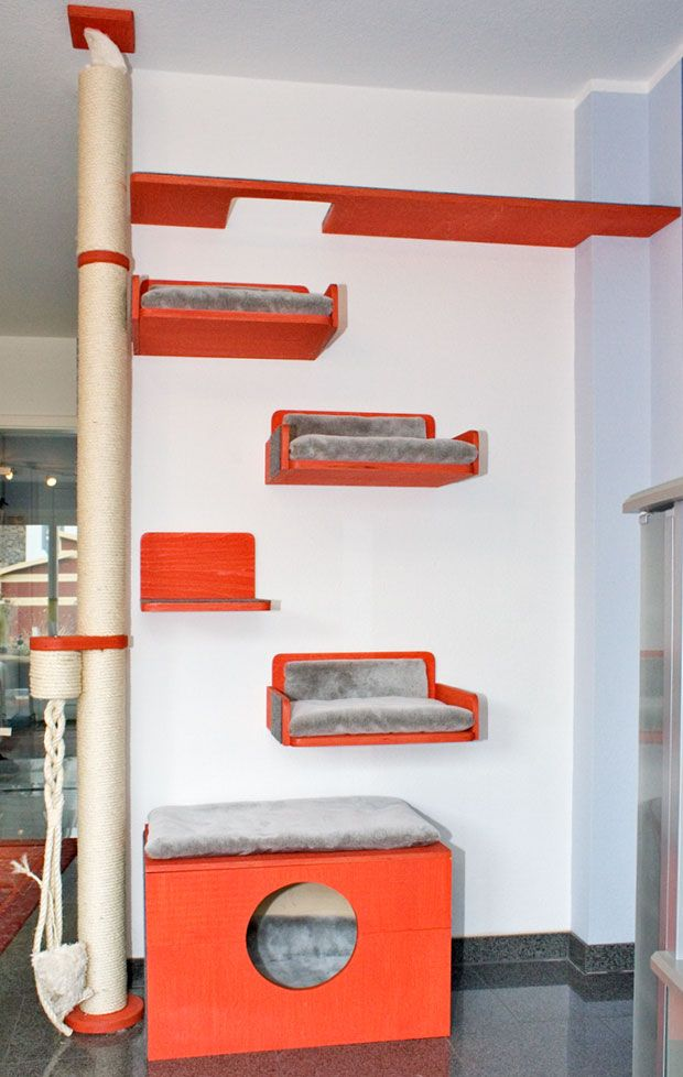 wandkratzbaum katze pinterest katzen kratzbaum und katzenm bel. Black Bedroom Furniture Sets. Home Design Ideas