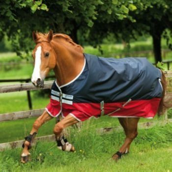 Horseware Ireland - Amigo MioTurnout Lite w/la 5PK - Navy-Red-6'0P by Horseware Ireland. $342.00. Horseware Ireland - Amigo MioTurnout Lite w/la 5PK - Navy-Red-6'0P. Save 10% Off!