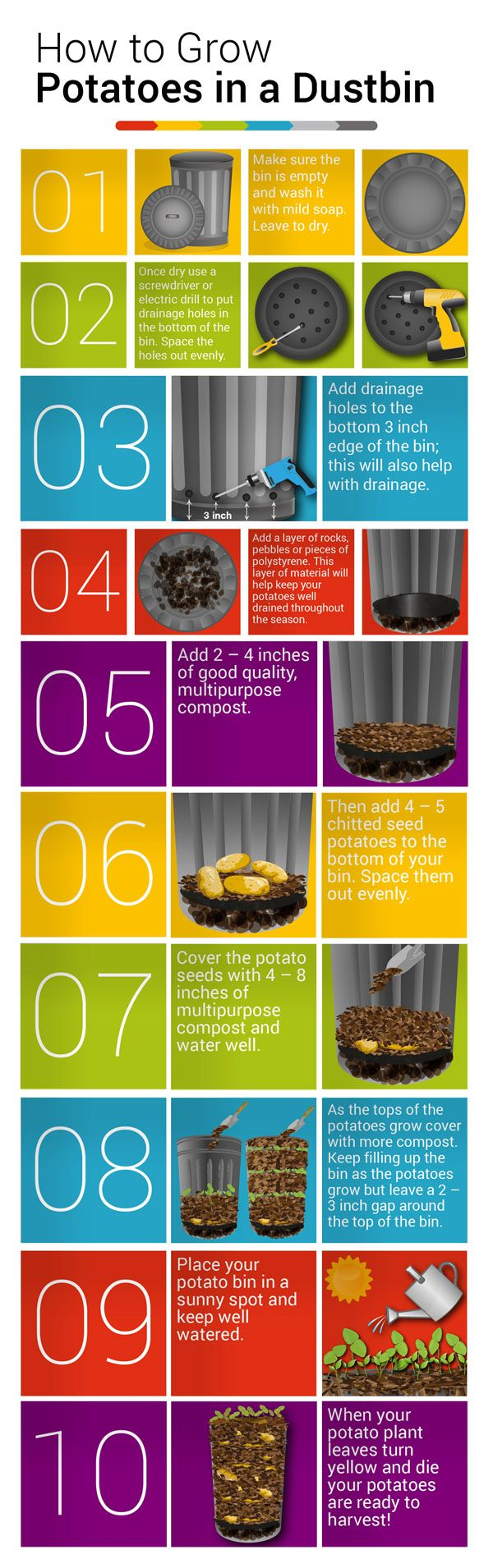 How to Grow Potatoes in a bin