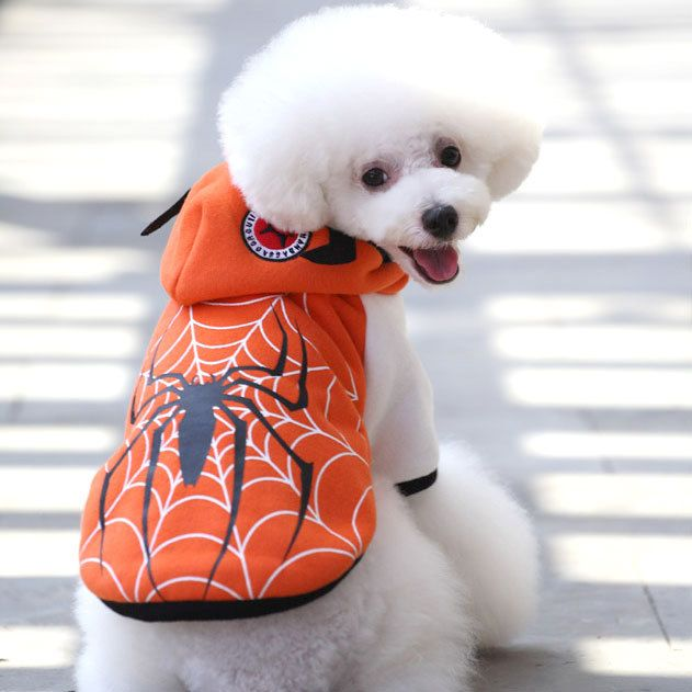 New ropa para perros pet products winter spider pattern hooded pullover dog clothes cheap dog clothes