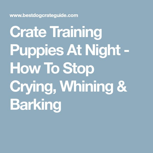 How To Get A Dog To Stop Whining In Crate