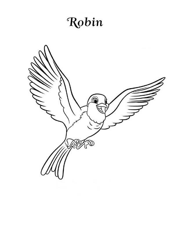 Robin Happy Robin Bird Coloring Page Bird Coloring Pages Online Coloring Pages Robin Bird