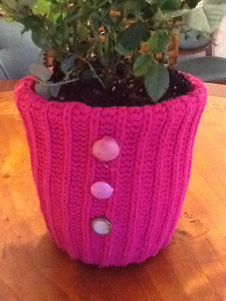 Winter flowers pot