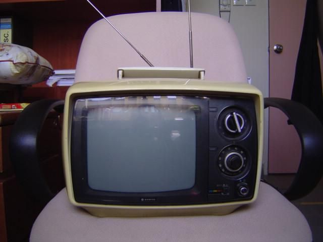 Some Parents of Children with Speech and Language Disorders Perceive Television as Positive