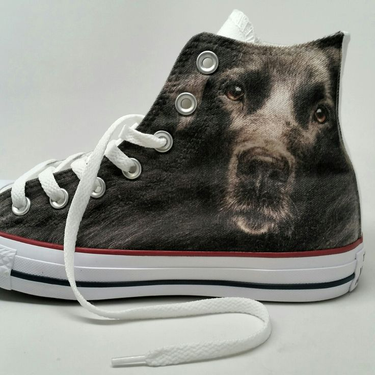 Converse Black Lab Custom High Top Shoes .   Shoes with Dogs on them are everything so designing your own converse online is perfect.  If you want a Black Lab, fine. But if you want to customize your own Chucks and need ideas for your sneakers just hit us up!