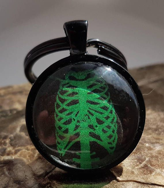 Check out this item in my Etsy shop https://www.etsy.com/ca/listing/161699632/green-skeleton-keychain-horror
