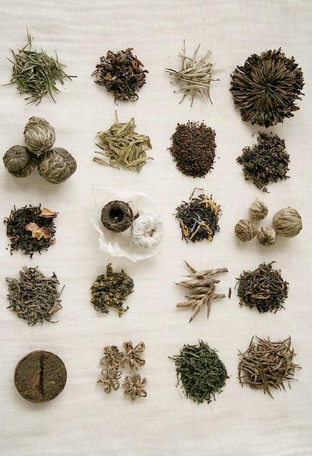 blooming teas - té en florecencia