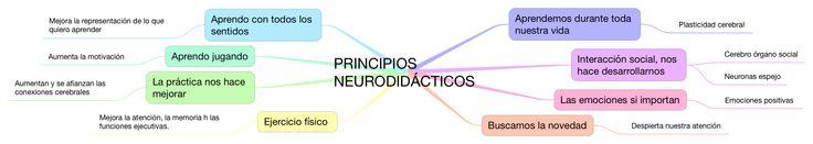 Mapa mental, sobre los principios neurodidacticos, claves a tener en cuenta en el diseño de las clases #neurodidactica #principiosneurodidacticos