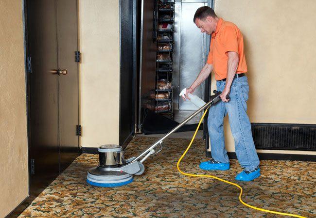 How to Shampoo Carpets