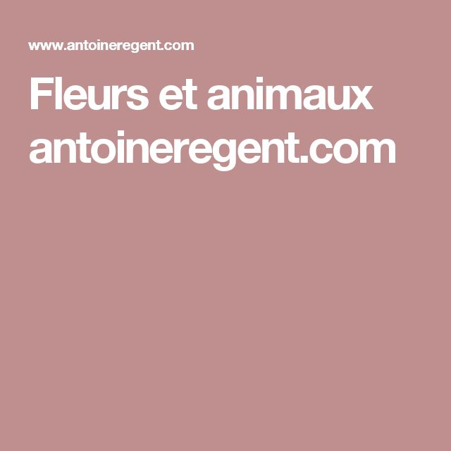 Fleurs et animaux antoineregent.com