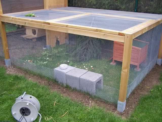 die besten 25 kaninchenauslauf ideen auf pinterest meerschweinchen hutch kaninchengehege. Black Bedroom Furniture Sets. Home Design Ideas