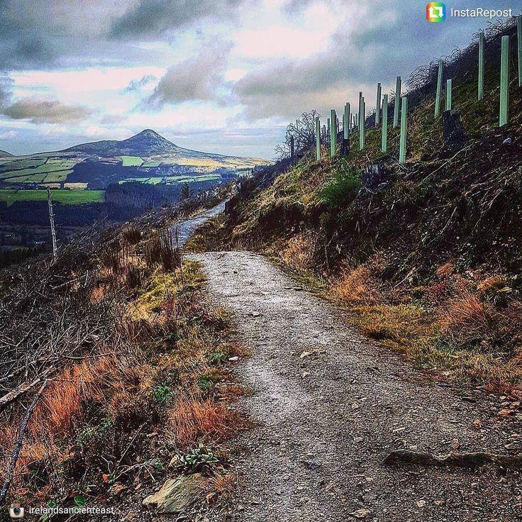 Le célèbre #Wicklow way est un des meilleurs #sentiers de #randonnée en #Irlande ! Photo de @kserious #IrelandsAncientEast