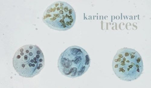 Karine Polwart - Traces (Track by Track)