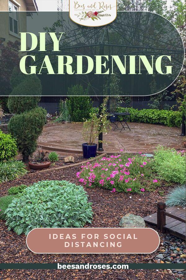 5 Diy Gardening Ideas That Are Social Distancing Approved Garden Diy On A Budget Garden Inspiration Diy Garden