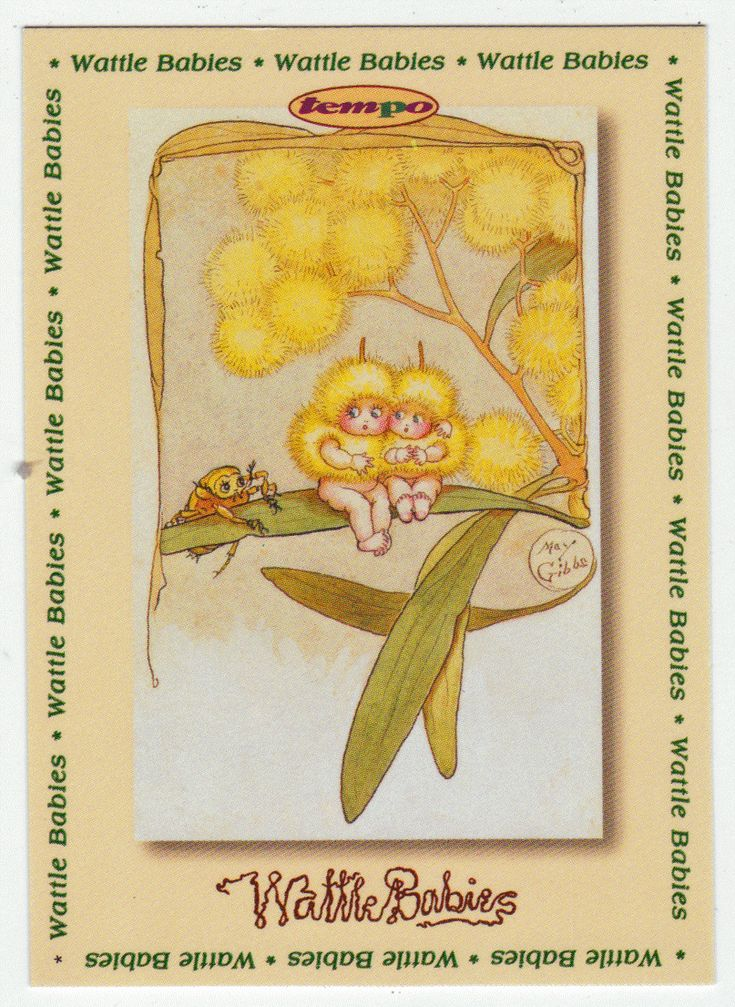 May Gibbs Cards # 93 - Wattle Babies