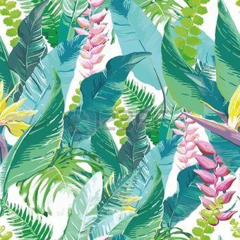 dessin fleur tropicale: Aquarelle illustration de fleurs exotiques et de feuilles