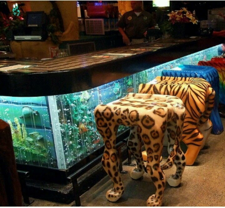 921 best images about acuario on pinterest saltwater for Fish tank bar