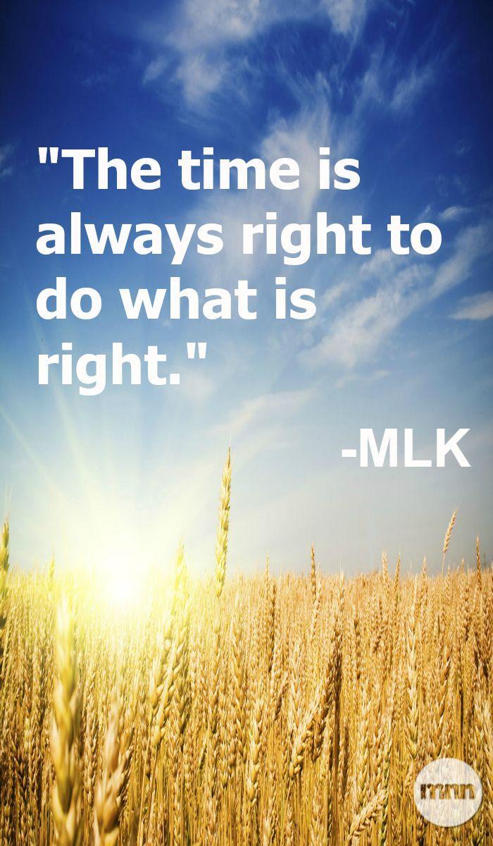 #MLK #quote