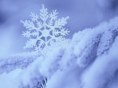 icicle - beautiful.