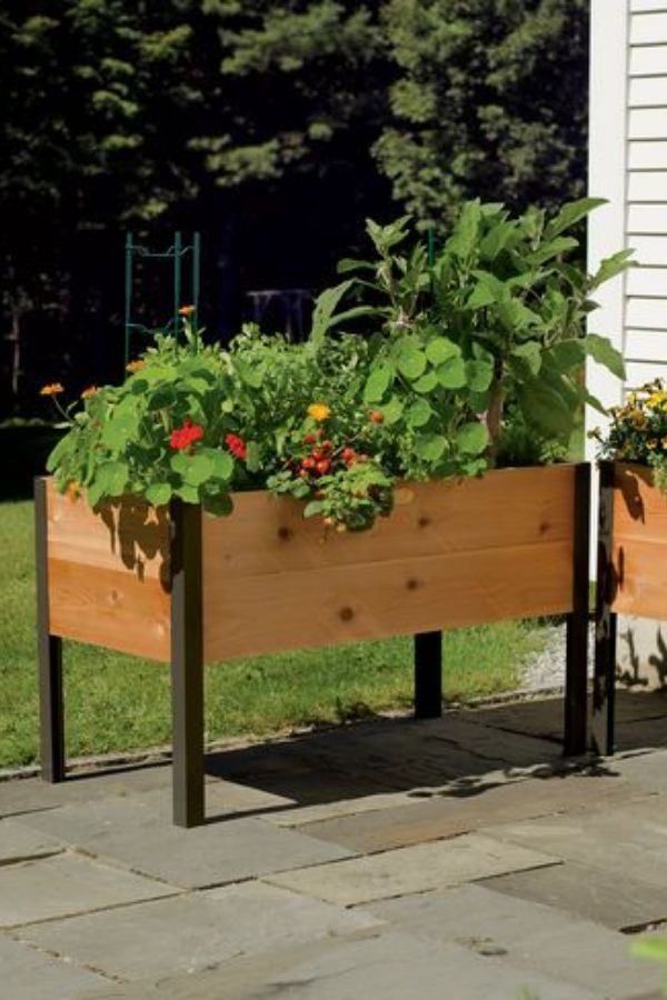 Pin By Tanushreeverma On Pinterest Cedar Planter Box Raised Bed