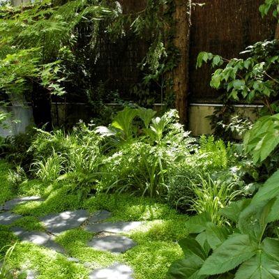 aménagement paysager d'un jardin contemplatif à Paris - agence paysagiste - sabz