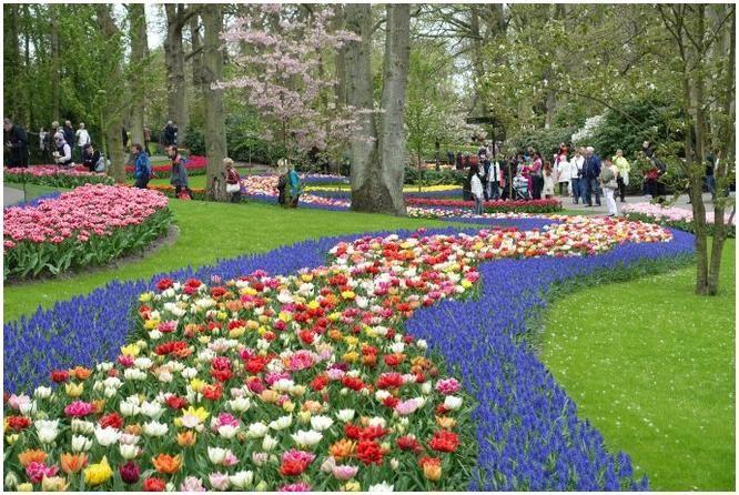 Account Suspended Schoner Blumengarten Garten Wunderschon