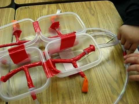build a 4 chamber working heart model