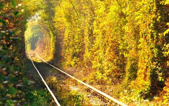 Tunelul iubirii din Caraş Severin