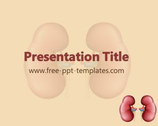 Kidney PowerPoint Template is a brown template with appropriate background image of kidney which you can use to make an elegant and professional PPT presentation. This FREE PowerPoint template is perfect for presentations that are related to kidney, some specific medical topics etc.