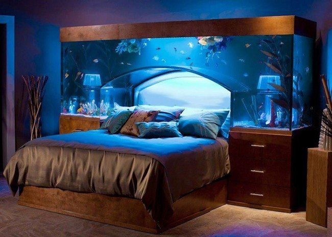 Transform The Way Your Home Looks Using A Fish Tank Part 84