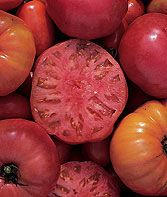 Spring planting. Nice large size for apps and sandwiches.Mortgage Lifter Tomato Seeds and Plants, Vegetable Gardening at Burpee.com