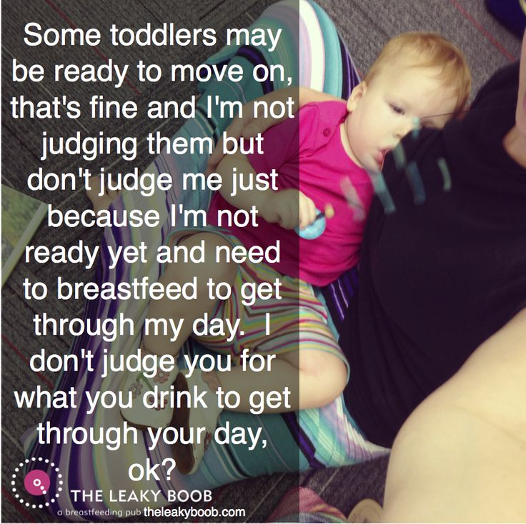 The Breastfeeding Toddler Explains...