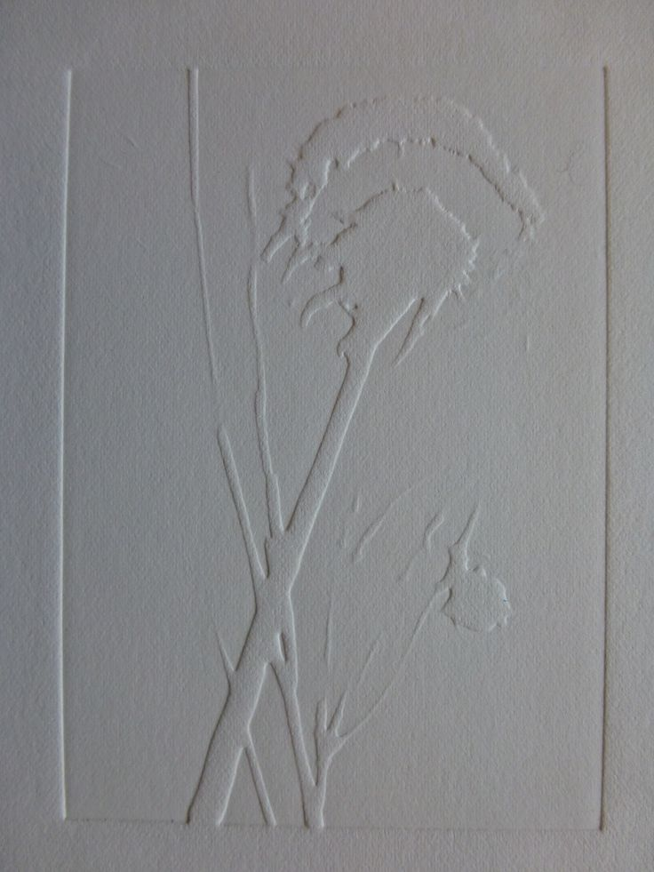 Blind emboss print from a solar plate etching.
