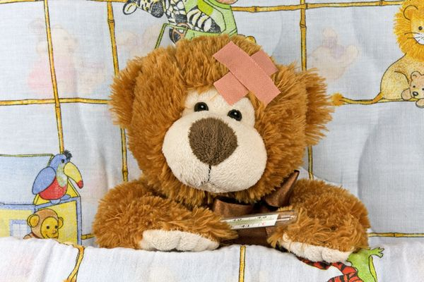"""I just can't BEAR It! Did you ever want to be a veterinarian or a surgeon or be that special person that brings """"life"""" back damaged stuffed animals?   YOU CAN! Become TEDDY BEAR REPAIR TECHNICIAN at Build-A-Bear Workshop, a $395M company where technicians fix damaged bears.They say that the most frequent trauma suffered is from dog attacks. There are hospitals devoted to Bears online and we found the Teddy Bear Hospital of Pittsburgh, but if you learn this skill, you could consider…"""