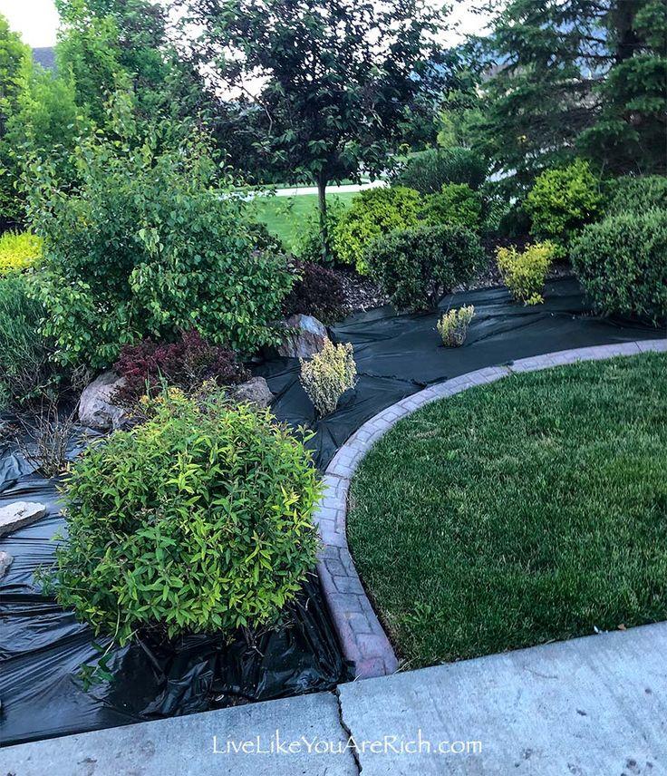 Maintenancefree weedless flower beds in 10 steps live