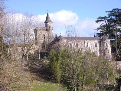 Château avec chambres d'hôtes et gîtes à vendre en Cévennes sud Lozère