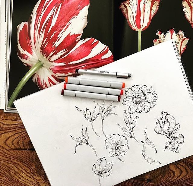 Beautiful hand drawn florals by Merve Aruta