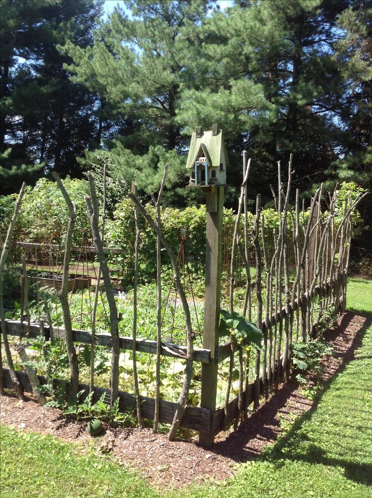 vegetable garden with stick fencing awesome at keeping deer at bay