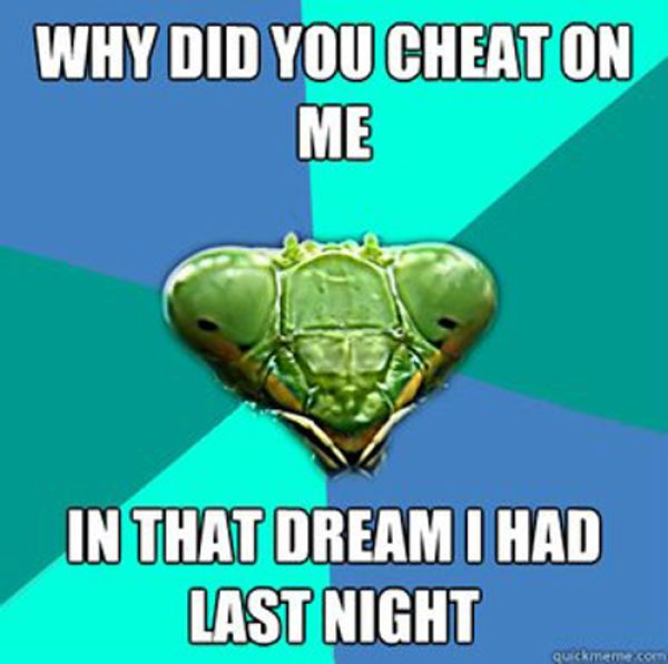 OMG I'm dying at all of these!! Killer Mantis Crazy GF Meme!