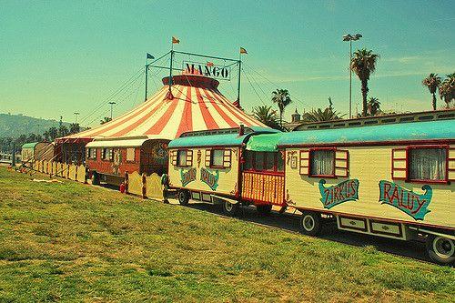 ...circus | by dhammza