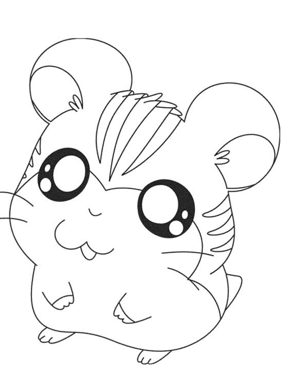 Baby Hamster Coloring Pages Cute Hamster Coloring Pages Coloring Pages