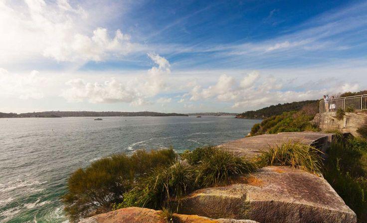 The Ten Best Coastal Walks in Sydney   Concrete Playground