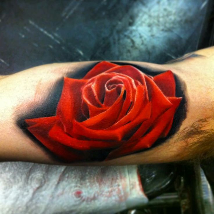 Hot Girl Show Simple Realistic Rose Tattoo On Upper Sleeve